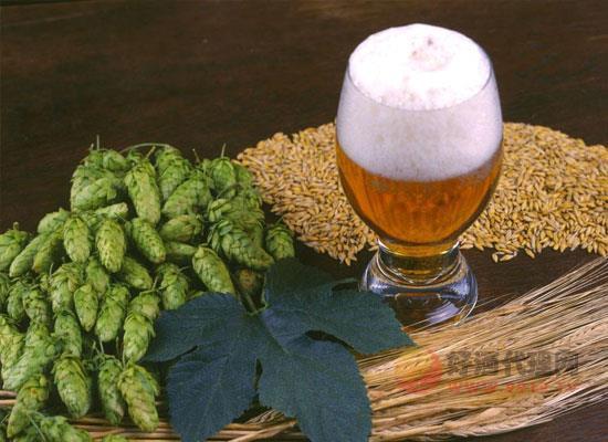 好啤酒应该具备的特点是什么,啤酒不是越贵越好