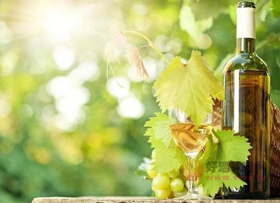 白葡萄酒的优势是什么,日常饮用白葡萄酒的好处有哪些