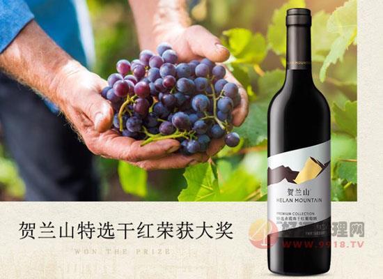 賀蘭山紅酒多少錢一瓶,值得購買嗎