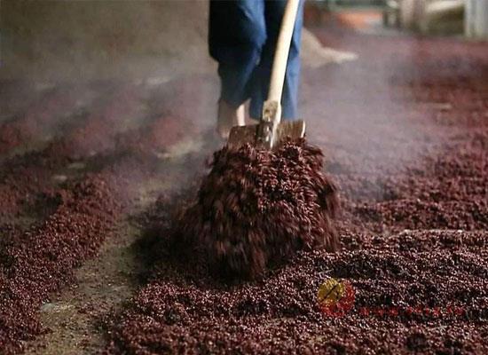 重陽下沙的來源是什么,重陽為什么要下沙