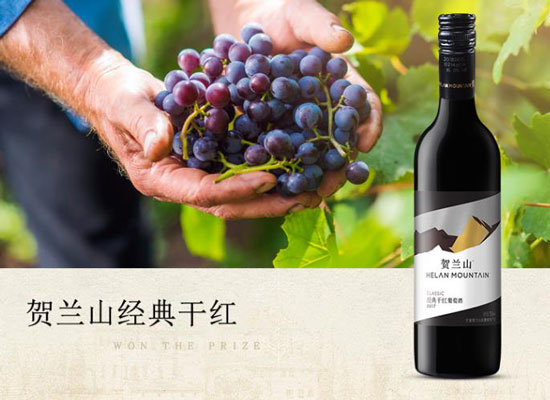 賀蘭山紅酒多少錢一瓶,賀蘭山經典干紅價格介紹
