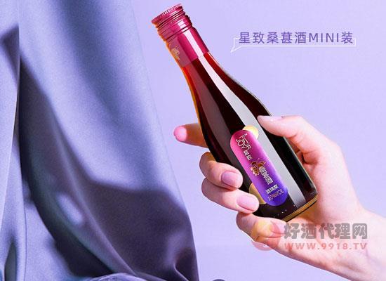 星致桑葚酒價格貴嗎,一瓶多少錢