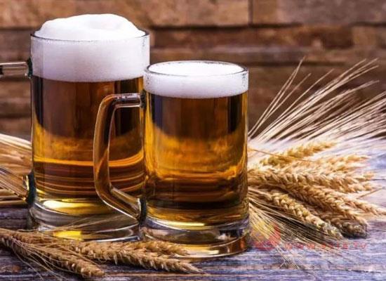 小麦啤酒和大麦啤酒有什么区别,两者哪个比较好喝