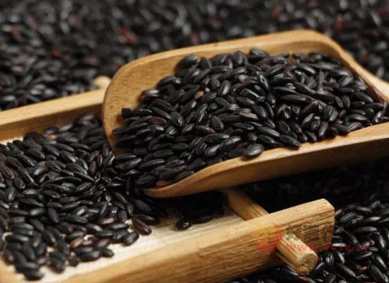 黑米酒的做法是什么,簡單幾步教你做出美味黑米酒
