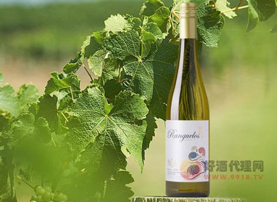 朗克魯美人魚白葡萄酒怎么樣,喝起來好喝嗎