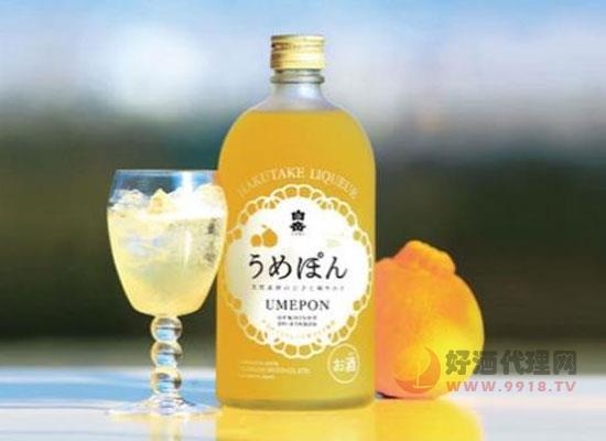 白岳柑橘梅子酒多少錢一瓶,價格怎么樣
