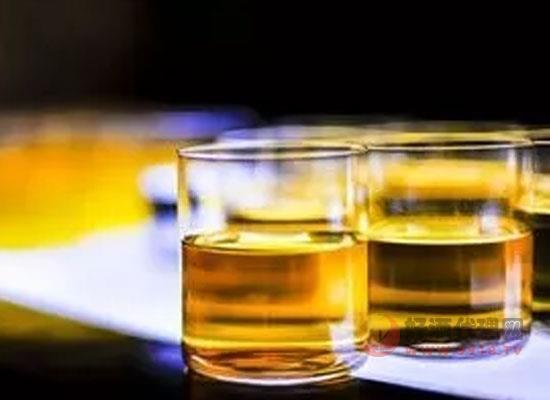 什么酒适合泡酒,泡酒的酒应具备什么条件