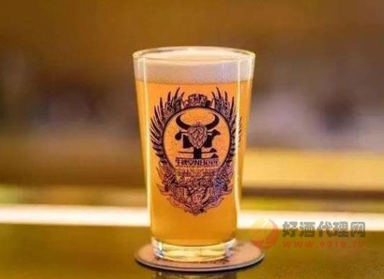 精酿啤酒加盟国内哪家好,盘点高性价比的国产精酿