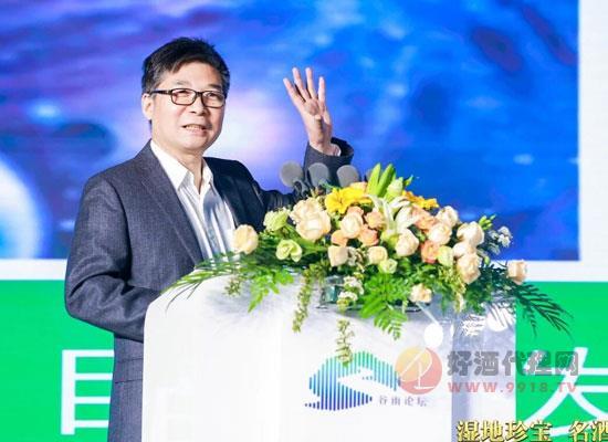 """洋河企业张联东,""""六新六化""""照进时代名酒"""
