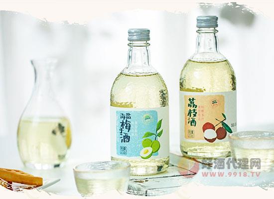 春山望海盐梅子酒价格贵吗,多少钱一瓶