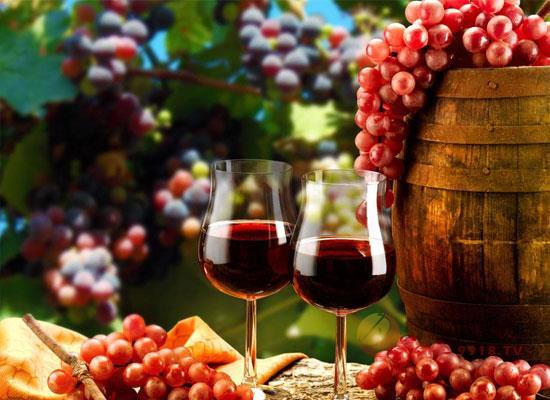 什么是特种葡萄酒,特种葡萄酒的特点是什么