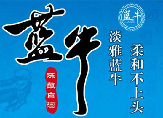 北京蓝牛酒业火热招商中,地道北京味深受消费者信赖