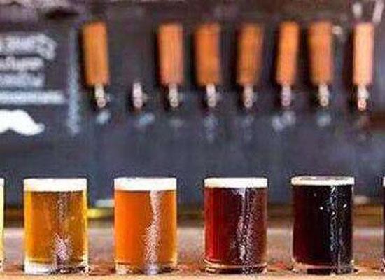 波特精釀啤酒代理招商 英式波特精釀啤酒代理價格